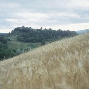 View of Certaldo.